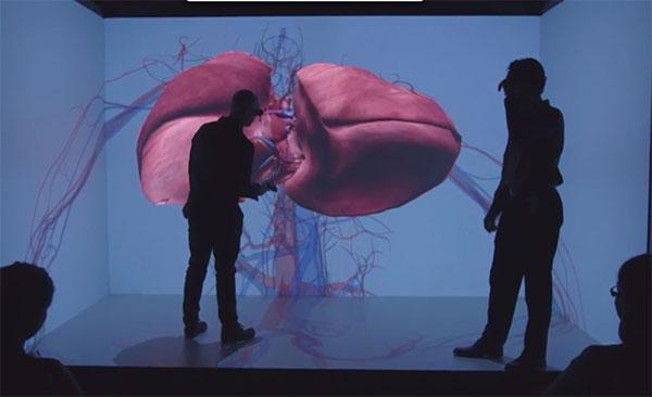 Los-modelos-realistas-de-corazones-en-3D-se-unen-a-la-batalla-contra-las-enfermedades-cardíacas-(4)