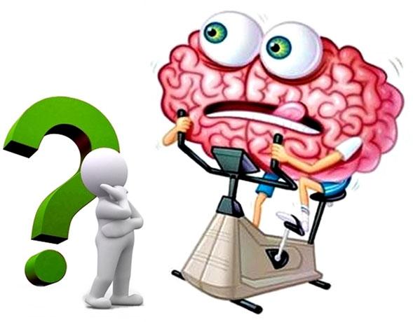 Cannabis-para-revertir-algunos-efectos-del-envejecimiento-cerebral-03