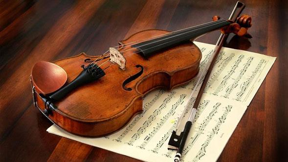 Hilos-de-arana-para-hacer-cuerdas-de-violin-03