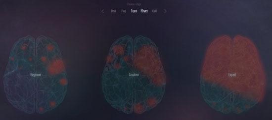 Cómo-reacciona-el-cerebro-humano-jugando-al-poker-04