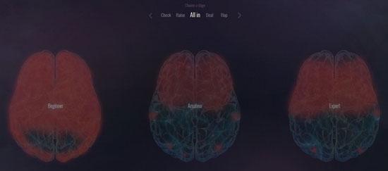 Cómo-reacciona-el-cerebro-humano-jugando-al-poker-09