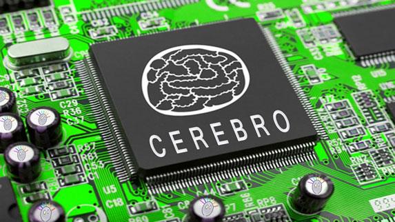 Los-mitos-sobre-el-cerebro-que-seguimos-creyendo-04.