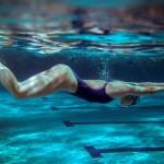 Dime qué modalidad de natación prácticas, y te diré qué músculos fortaleces