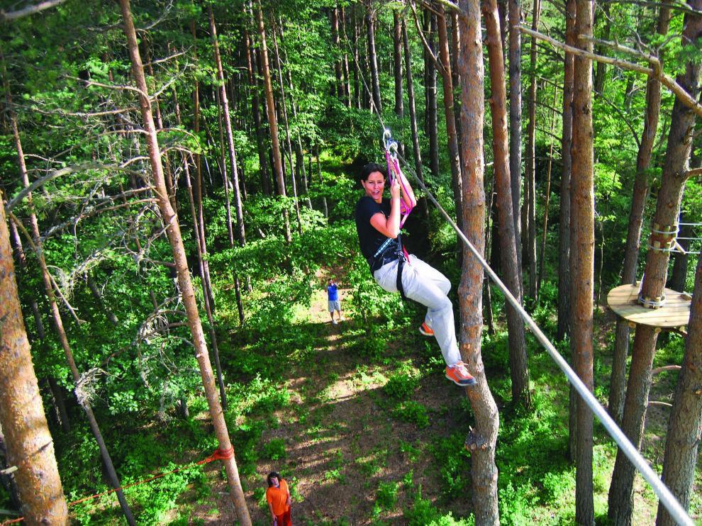 Trepar árboles, el nuevo deporte que está de moda